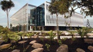 Auslandssemester an der University of Waikato in Neuseeland
