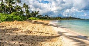 Studieren auf Hawai'i