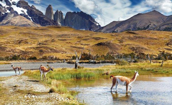 Die Studiengebühren in Chile können mit Auslands-BAföG finanziert werden.