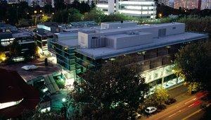 Studieren an der University of Auckland