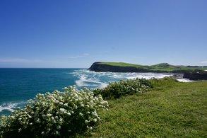 Abenteuer Natur im Auslandssemester in Neuseeland genießen