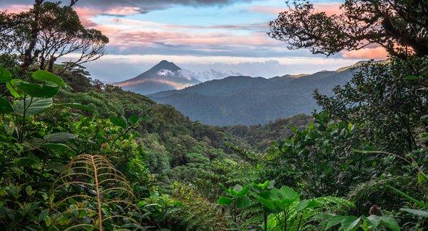Costa Rica bietet eine große Pflanzen-und Tiervielfalt