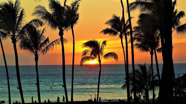 Auslandssemester auf Hawai'i: Trotz Corona eine Option