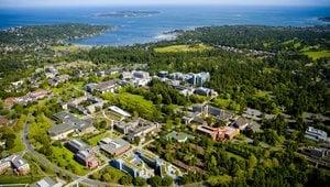 Auslandsstudium an der University of Victoria in Kanada.