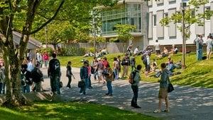 Auslandsstudium in Vancouver über IEC