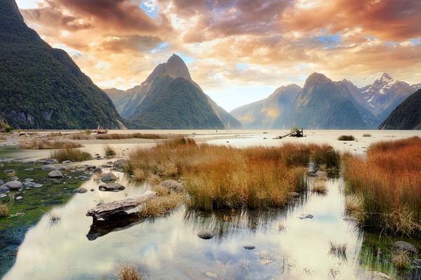 Natur genießen und fürs Leben lernen im Auslandssemester in Neuseeland.
