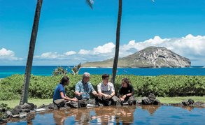 Im Wintersemester nach Haiwaii: Hawaii Pacific University
