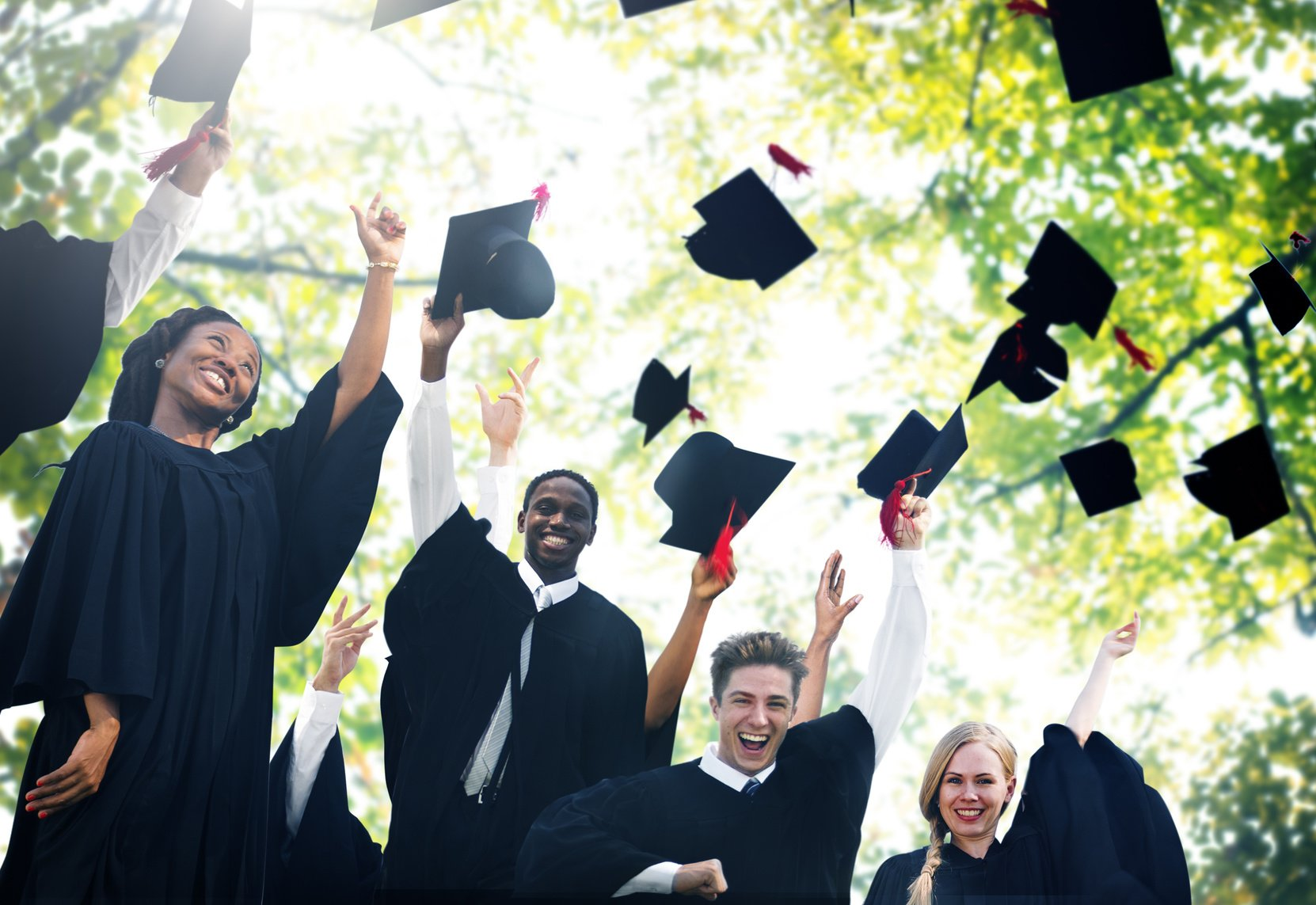 BWL im Ausland studieren - Optionen für das